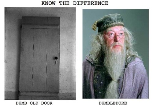 Dumb Old Door vs Dumbledore