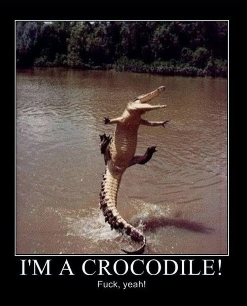 Crocodile Motivational Poster