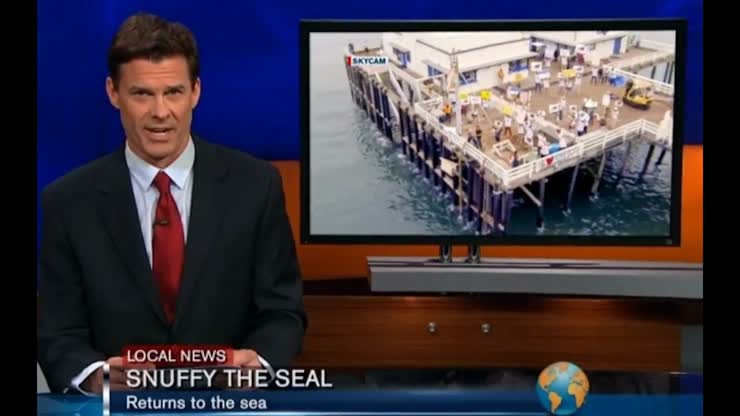 Seal release spoof news clip for a Shark Week commercial